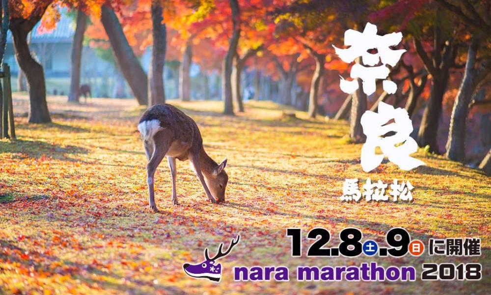 2018年奈良馬拉松