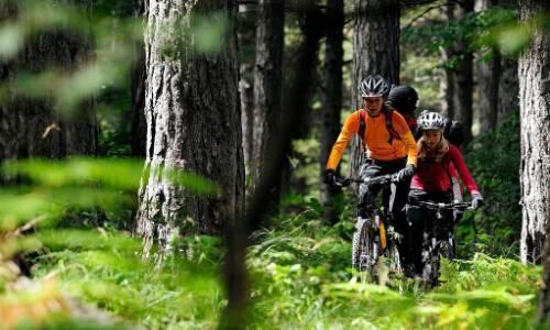 2015长春净月潭森林山地自行车赛