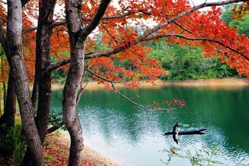 2015中国·上犹陡水湖首届山地自行车邀请赛