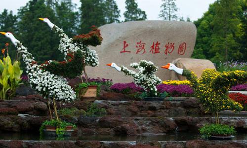 上海植物园公益跑