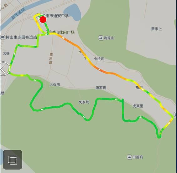 路线.webp.jpg