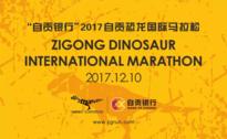 """""""自贡银行""""2017自贡恐龙国际马拉松赛"""