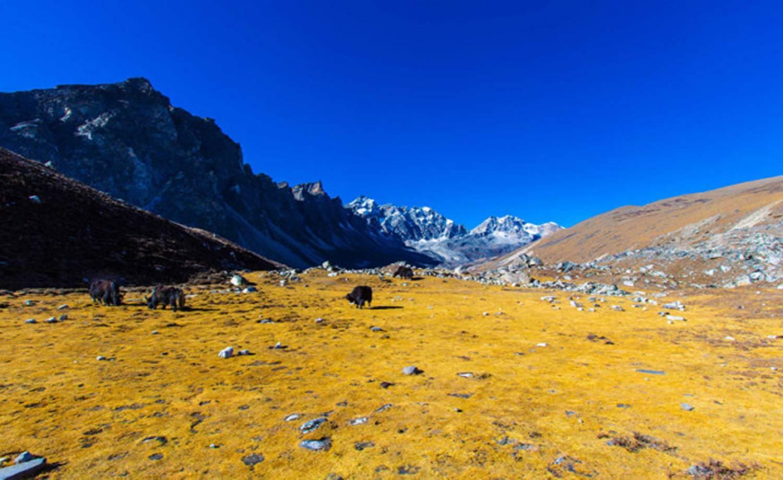 探访世界之巅,尼泊尔EBC 世界顶级徒步圆梦之旅