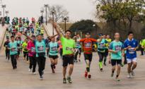 2018第九届苏州环金鸡湖国际半程马拉松