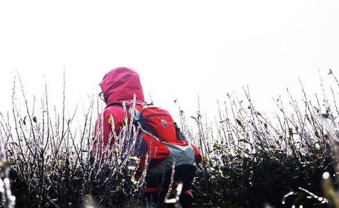 01月26日晚-01月28日 冰火两重天 休闲风景线 徒步宁海步道 享受天然森林温泉