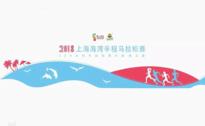 2018上海海湾半程马拉松赛  550乡村马拉松第六站第三届